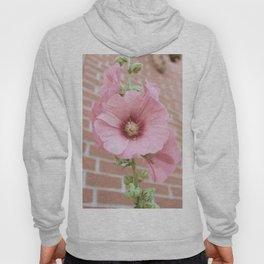 Beautiful Pink Vintage Flower Hoody