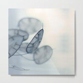 in light Metal Print