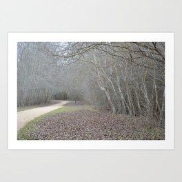 Dirt Path Art Print
