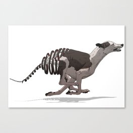 Greyhound Unravelled Canvas Print