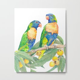 Rainbow Lorikeet Couple - watercolour of Australian parrots Metal Print