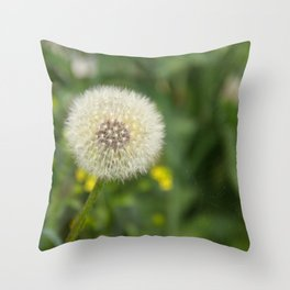Dandelion in a spider's web Throw Pillow