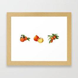 Hug Your Farmer (Orange Fruits) Framed Art Print