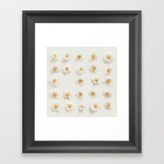 Daisy Collection Framed Art Print