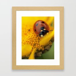 Ladybird, macro photography, still life, fine art, nature photo, romantic wall print Framed Art Print