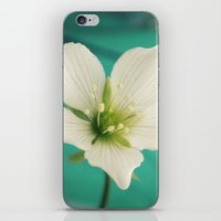 venus iPhone & iPod Skins featuring Venus by Victoria Spahn