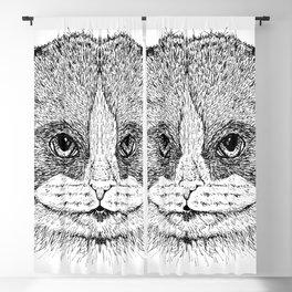 Cat 10 Blackout Curtain