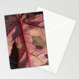 Underside of a Red Leaf Stationery Cards