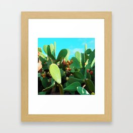 Cactus fruit turquoise Framed Art Print