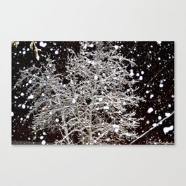 It's Beginning To Look A Lot Like Christmas. Canvas Print