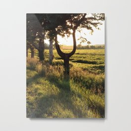 The  U tree Metal Print