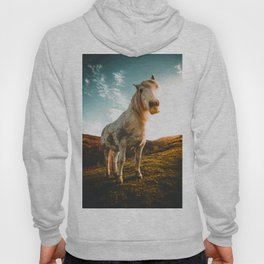 Horse (Color) Hoody