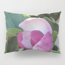 A Fig Prefigured Pillow Sham