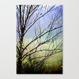 Riverbirch Canvas Print