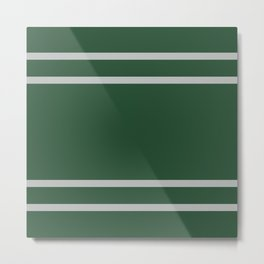 Slytherin Stripes Metal Print