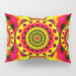 Psychedelic Visions G144 Pillow Sham