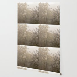 Autumnal naked trees surrounded by fog Wallpaper