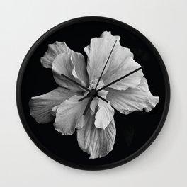 Hibiscus Drama Study - Black & White High Impact Photography Wall Clock