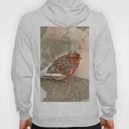 Lovely runaway canary bird Hoody