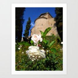 Roses at Villa d'Este Art Print