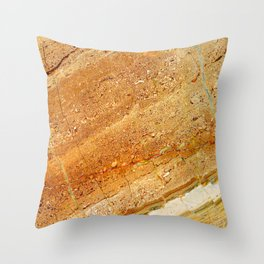 Specular Marble Texture Throw Pillow