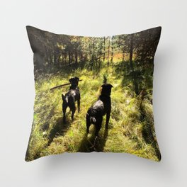 Tennis Ball Season Throw Pillow