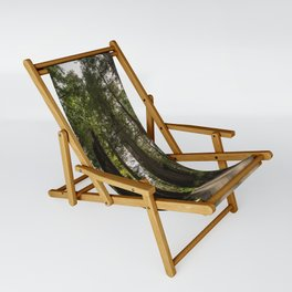 Redwoods Make Me Smile - Nature Photography Sling Chair