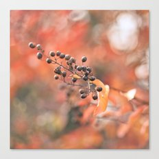 Autumn Berries Canvas Print