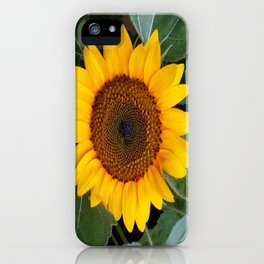 IT'S A SUNNY DAY iPhone Case