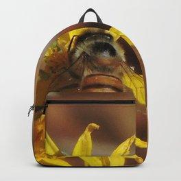 Desert Sunflower Pollen Picker Backpack