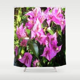 Purple Pink Bougainvillia In Blossom  Shower Curtain
