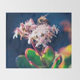 Crassula ovata Jade Flowers and Honey Bee Kula Maui Hawaii Throw Blanket