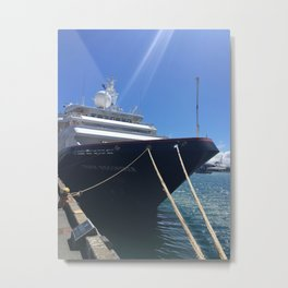 Luxury Liner Metal Print