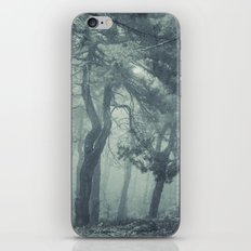 Come in.... iPhone & iPod Skin