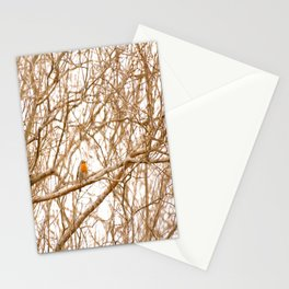 Robin In Early Spring #decor #society6 Stationery Cards