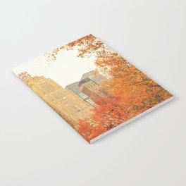 Autumn - Central Park - Fall Foliage - New York City Notebook