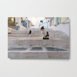 How Many Cats Do You See? I Naxos, Greece I Travel Photography Metal Print