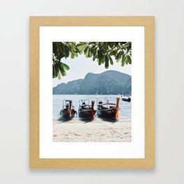 Longtail Lineup Framed Art Print