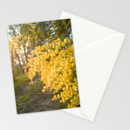 Winter flowers of Sicily Stationery Cards