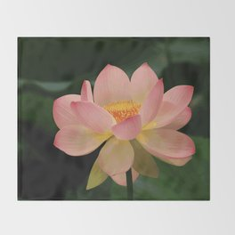 Peaceful Zen Garden Pink Lotus Floral Throw Blanket