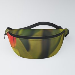 Concept Mother´s Day : Red tulips Fanny Pack