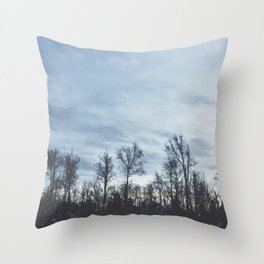 Wintery Hue Throw Pillow