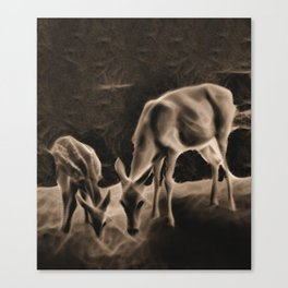 Doe And Fawn At Night Canvas Print