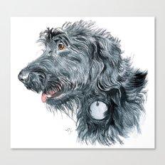 Black Labradoodle Canvas Print
