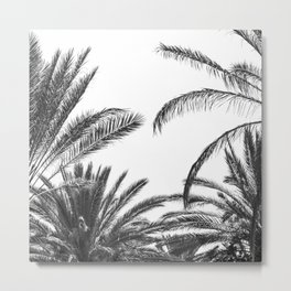 Palm Trees B&W Metal Print