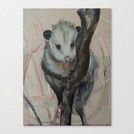 Cute Opossum Canvas Print
