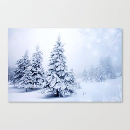 Beauty Pines Canvas Print