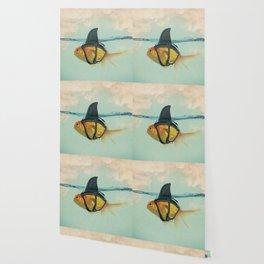 Goldfish with a Shark Fin Wallpaper