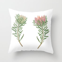 Watercolor painting protea flowers set Throw Pillow