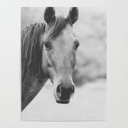 Wild Heart, No. 4 Poster